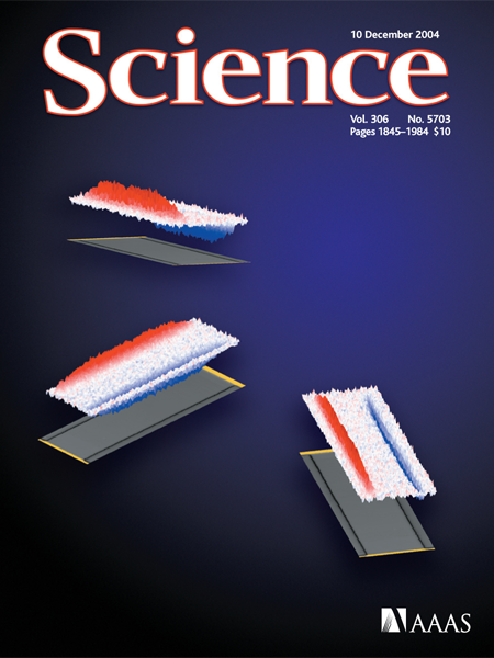Observation of the Spin Hall Effect in Semiconductors
