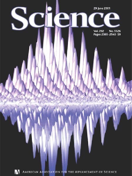 Ultrafast Manipulation of Electron Spin Coherence